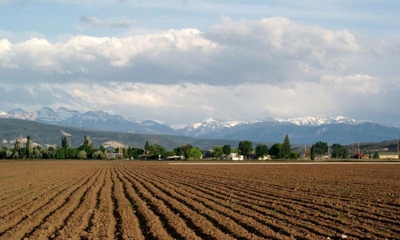 A Farm in Montrose Colorado